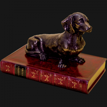Dachshund On Book