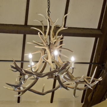 Grand 5 Lamp Antler Chandelier
