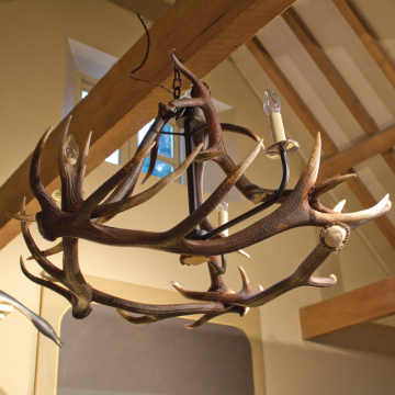 Antler Chandelier - 3 Arm