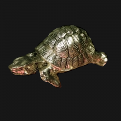 Tortoise Silver Plate